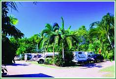 Tropical Hibiscus Caravan Park - Accommodation Find
