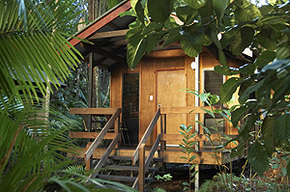 Cape Trib Beach House - Accommodation Find