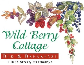 Wild Berry Cottage - Accommodation Find