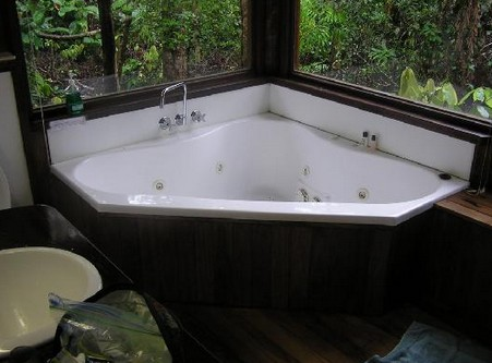 The Canopy Rainforest Tree Houses and Wildlife Sanctuary - Accommodation Find