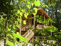 Rivers Edge Rainforest Retreat - Accommodation Find