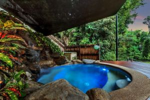 Platypus Springs Rainforest Retreat - Accommodation Find
