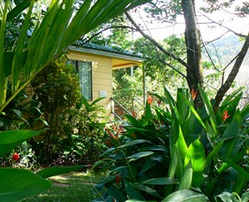 Daintree Valley Haven - Accommodation Find