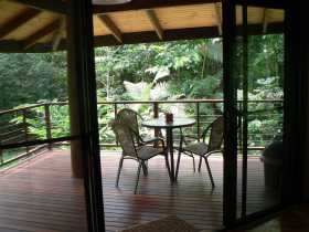 Cape Trib Exotic Fruit Farm Bed and Breakfast - Accommodation Find