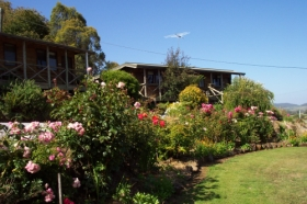 Mole Creek Holiday Village - Accommodation Find