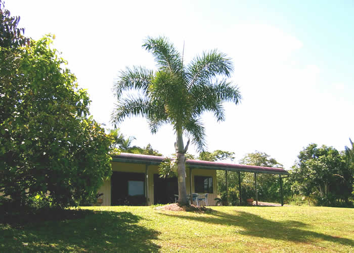 Daintree Mountain View Retreat and Vanilla Beans - Accommodation Find