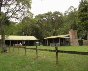 Tree Fern Lodge - Accommodation Find