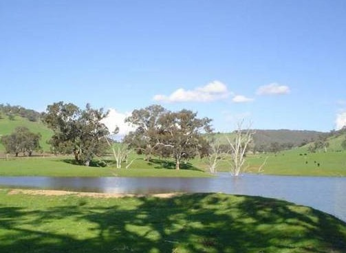 Hillview Farmstay - Accommodation Find