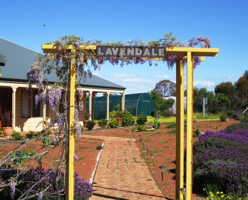 Lavendale Farmstay and Cottages - Accommodation Find