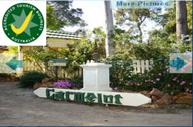 Carmelot Bed  Breakfast - Accommodation Find