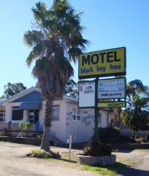 Blackboy Tree Motel - Accommodation Find