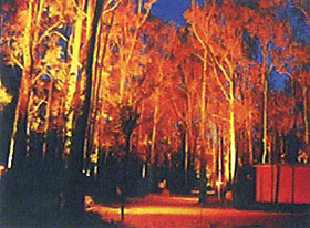 Dwellingup Chalet amp Caravan Park - Accommodation Find