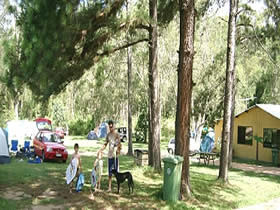 Glasshouse Mountains Holiday Village - Accommodation Find