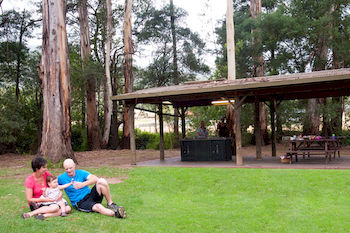 BIG4 Yarra Valley Holiday Park - Accommodation Find