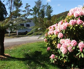 Zeehan Bush Camp  and Caravan Park - Accommodation Find