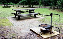 Bellbird campground - Accommodation Find