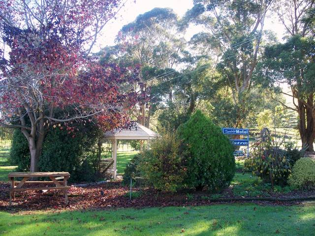 Toora Lodge Motel - Accommodation Find