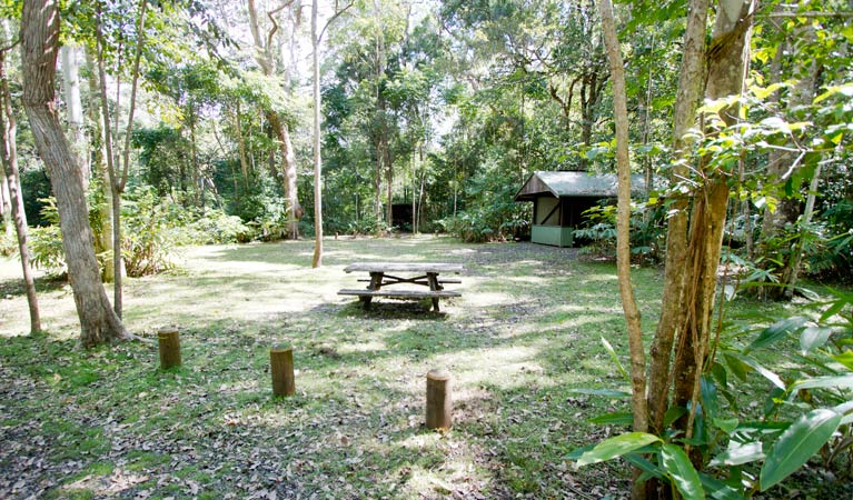 Iron Pot Creek campground - Accommodation Find