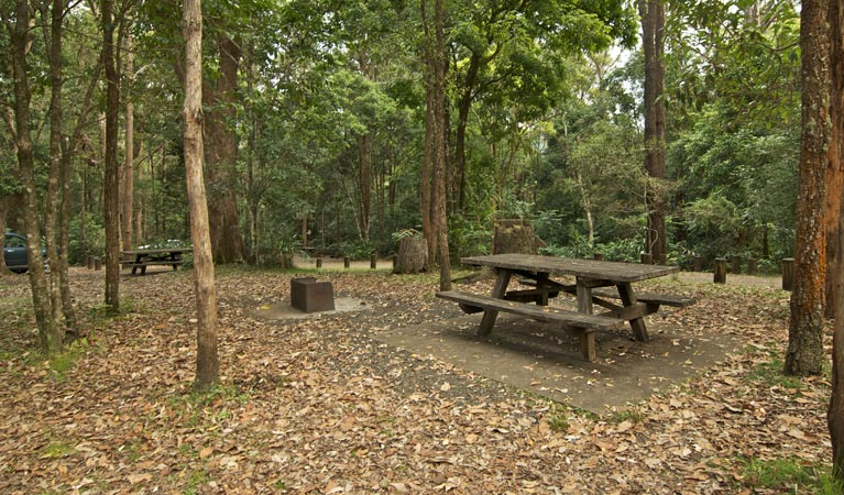 Sheepstation Creek campground - Accommodation Find