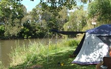 Williams River Holiday Park - Accommodation Find