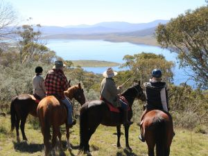 Reynella Homestead and Horseback Rides - Accommodation Find