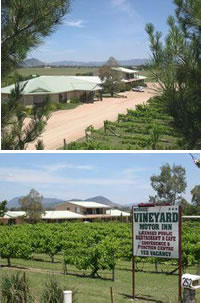 Mudgee Vineyard Motor Inn - Accommodation Find