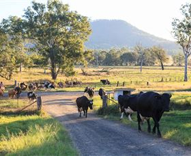 Tommerups Dairy Farmstay - Accommodation Find