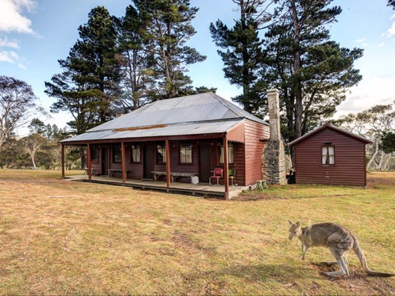 The Pines Cottage - Accommodation Find