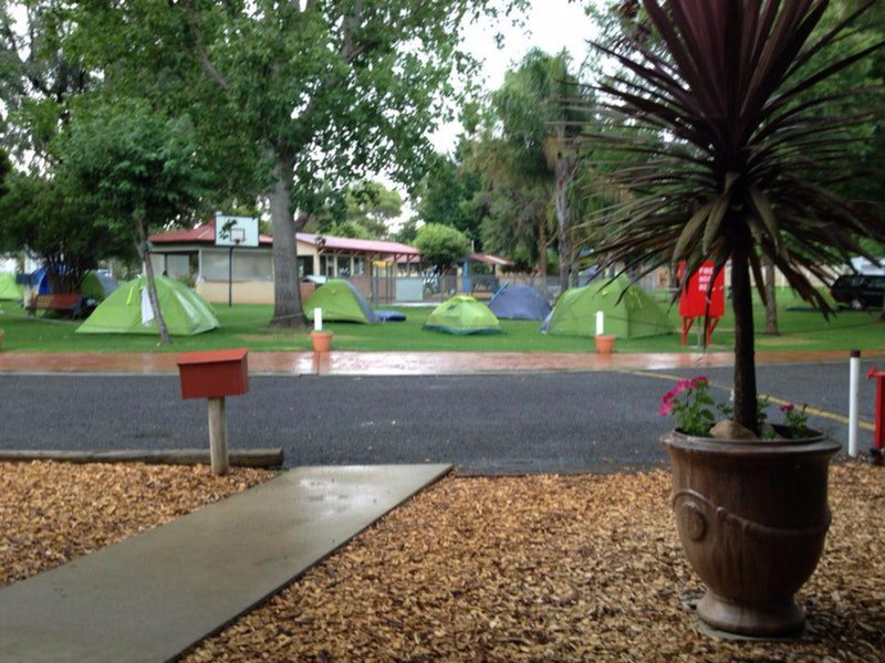 Young Caravan Tourist Park - Accommodation Find