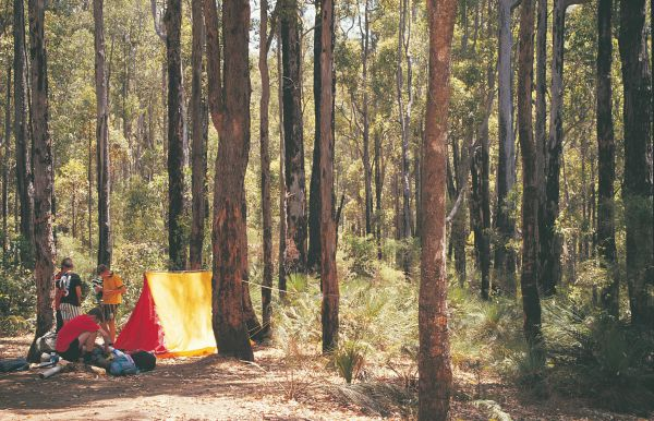 Nanga Mill Camp at Lane Poole Reserve - Accommodation Find