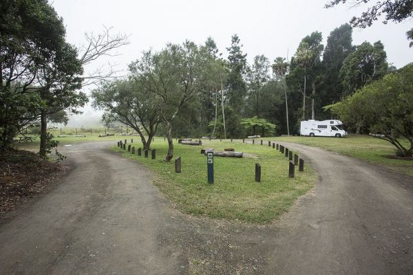 Eungella National Park Camping Ground - Accommodation Find
