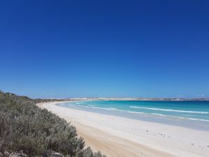 Coffin Bay National Park Campgrounds - Accommodation Find