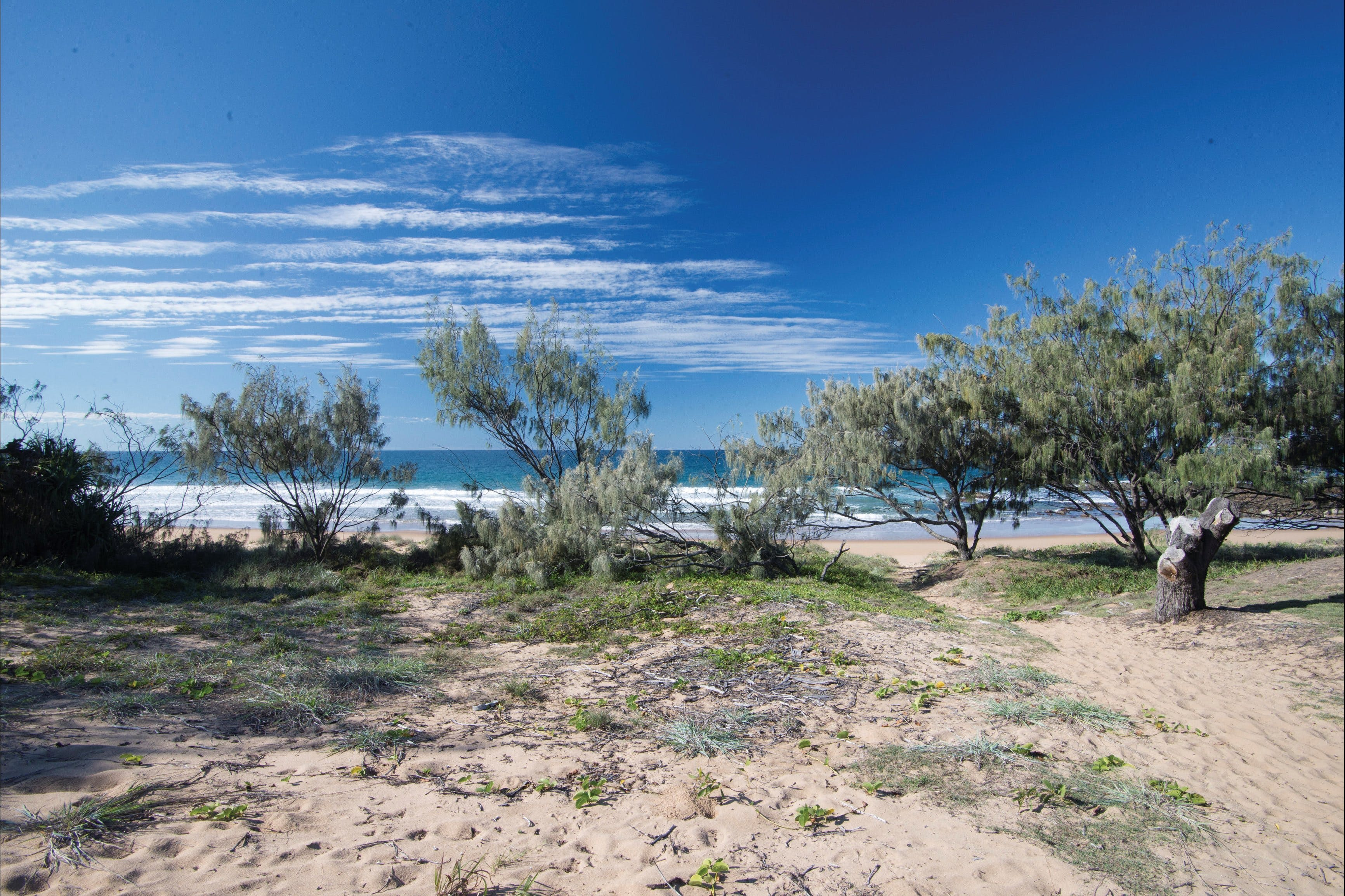 Deepwater National Park camping - Accommodation Find