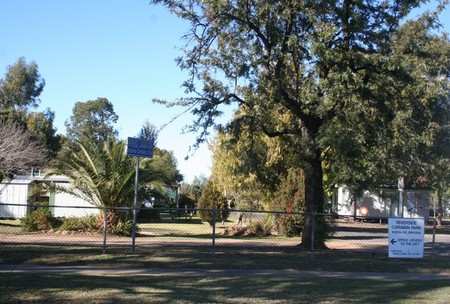Bingara Caravan Park - Accommodation Find