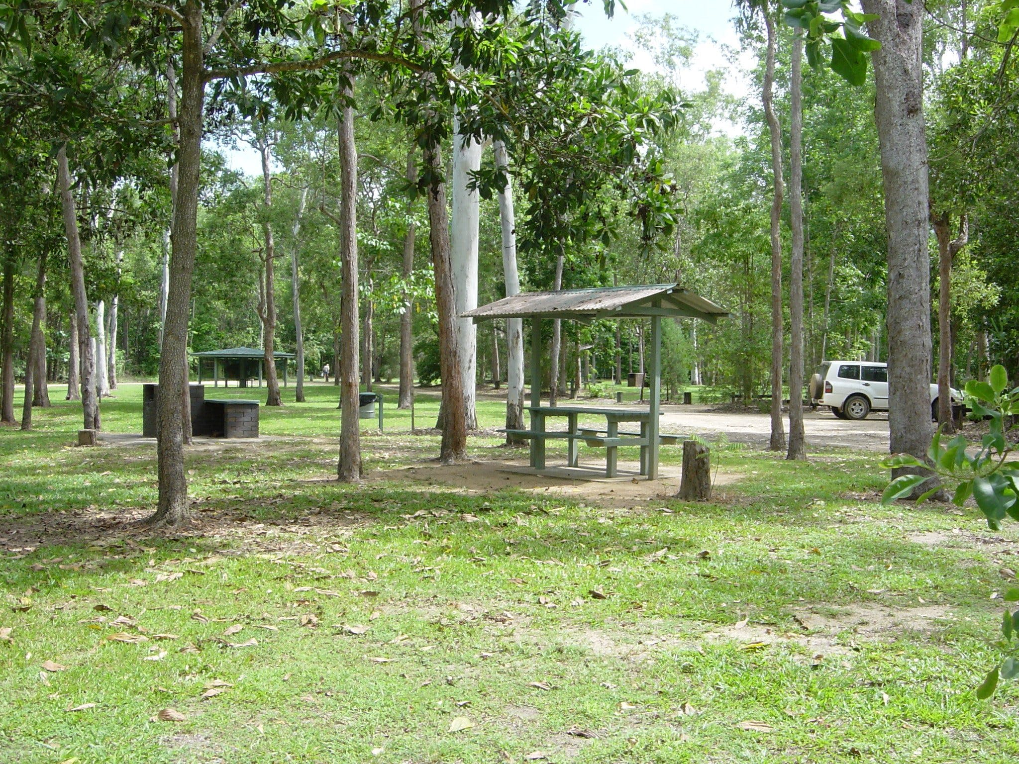 Broadwater camping area Abergowrie State Forest - Accommodation Find