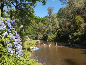 Jamieson Caravan Park - Accommodation Find