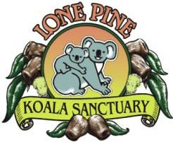 Lone Pine Koala Sanctuary - Accommodation Find