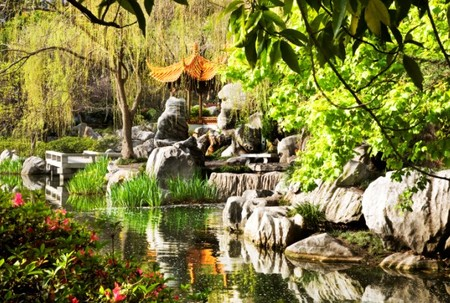 Chinese Garden Of Friendship - Accommodation Find
