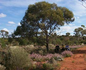 Karlkurla Bushland Park - Accommodation Find