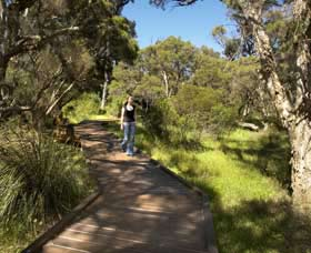 Leschenault Peninsula Conservation Park - Accommodation Find