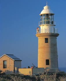 Vlamingh Head Lighthouse - Accommodation Find
