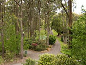 Mount Lofty Botanic Garden - Accommodation Find