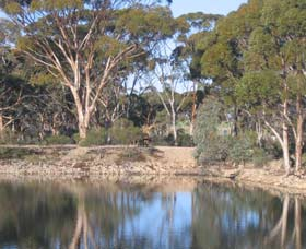 Merredin Railway Dam - Accommodation Find
