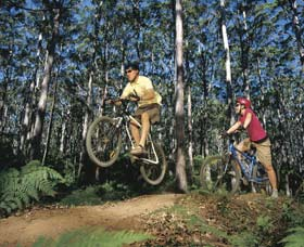 Leeuwin-Naturaliste National Park - Cowaramup - Accommodation Find