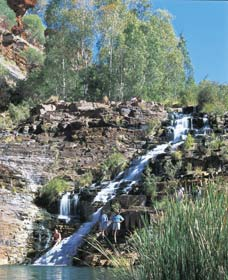 Fortescue Falls - Accommodation Find