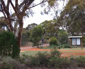 Gribble Creek Walk and Cycle Way - Accommodation Find