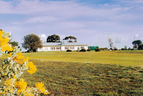 Lucindale Country Club - Accommodation Find