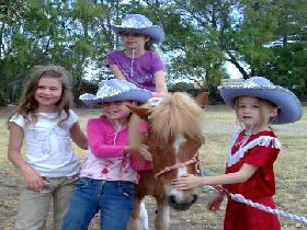 Amberainbow Pony Rides - Accommodation Find