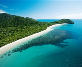 Cape Tribulation Daintree National Park - Accommodation Find