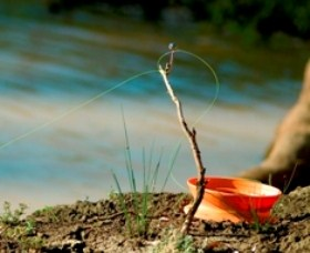Charleville - Mangalore Warrego River Fishing Spot - Accommodation Find